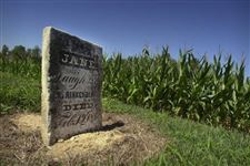 Cemetery-holds-clues-to-early-history-of-county-2