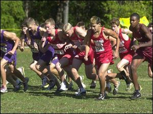 And they're off ... at the boys Division I district cross country meet at Pearson Park yesterday.