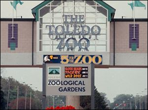 The issuance of $13 million in bonds will enable the Toledo Zoo to get moving on its African-themed exhibit, the largest and most costly it's ever undertaken. The exhibit, on the west side of the Anthony Wayne Trail, will have six giraffes, impalas, kudus, cranes, vultures, and ostriches along with a new cheetah exhibit.