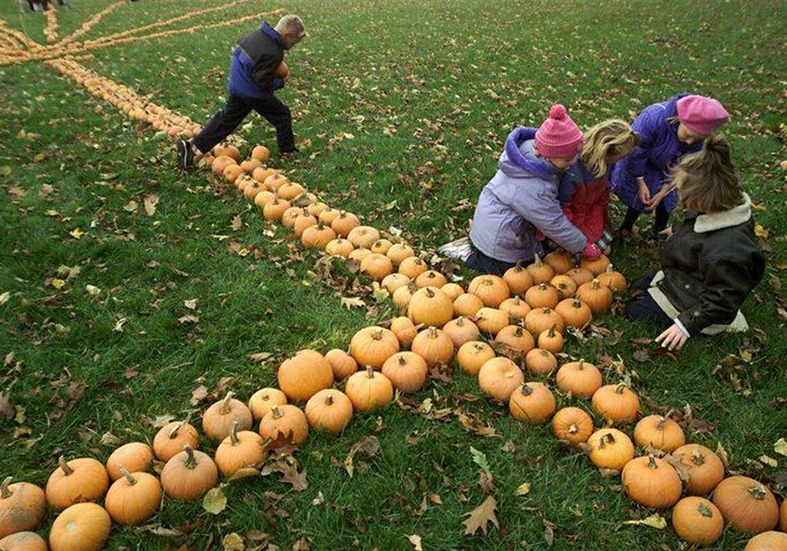 Toledo pumpkin patches & pumpkin picking locations.