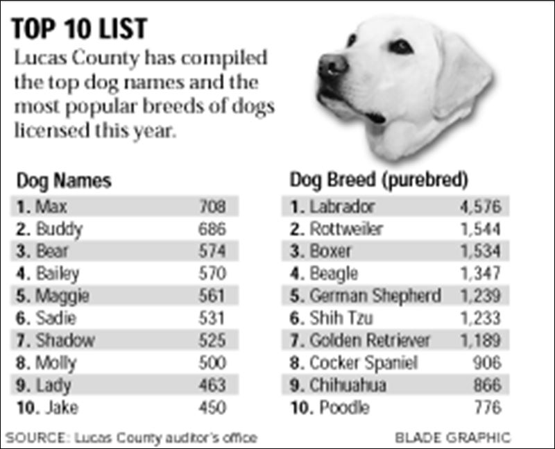 Max continues reign at top of dog-name list - Toledo Blade