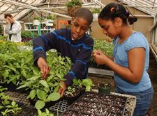 3-youths-grow-into-gardeners