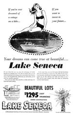 Bargain-values-at-troubled-Lake-Seneca-2