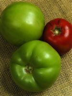 Try-a-nice-ripe-green-tomato
