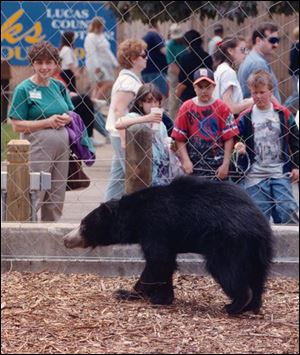 Dr. Reichard was out of town when a sloth bear was mistakenly deprived of sustenance and died in 2000.