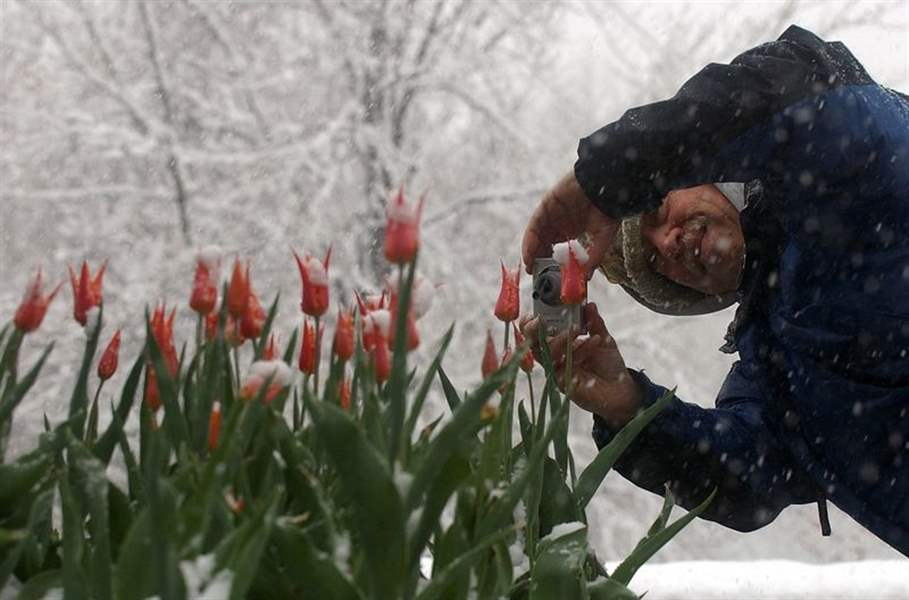 What-spring-4-quot-of-snow-coat-Toledo-area