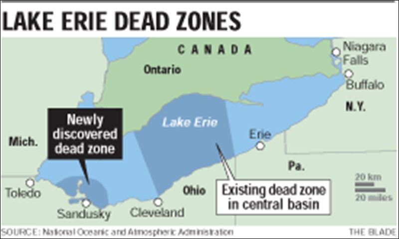 Newest lake erie 39 dead zone 39 brings horror story for fish for Lake erie perch fishing hot spots