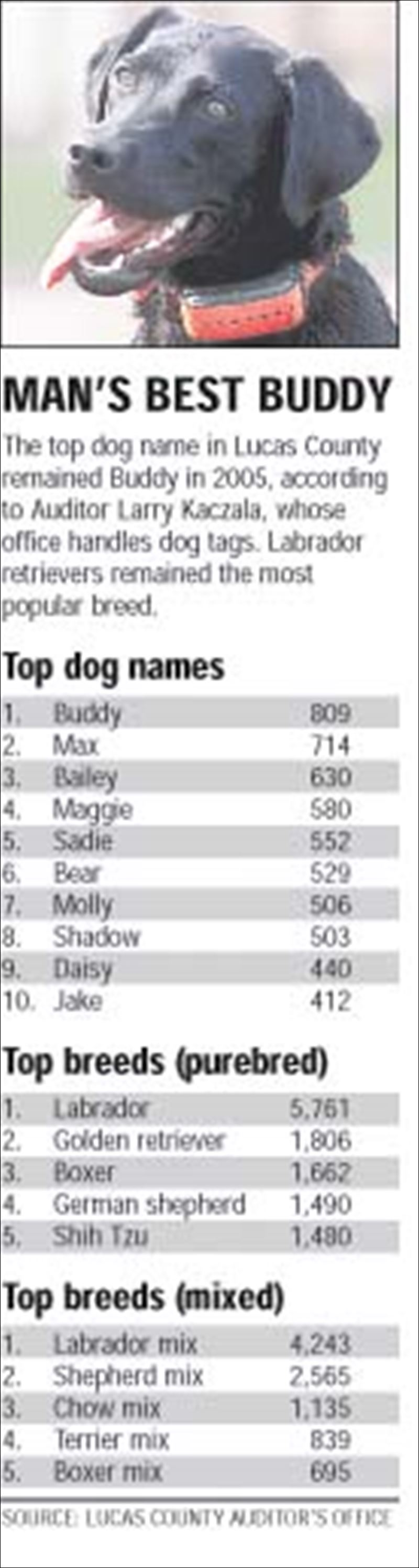 German Male Dog Names ...