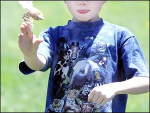 Ethan Cole, 7, of Maumee, throws a dart made from corncobs and feathers.