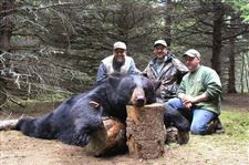 Evanoff-downs-a-650-pound-black-bear