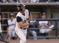 Mud-Hens-a-vision-of-hitting