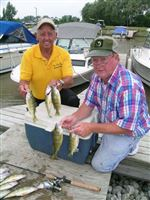 Reef-provides-bounty-of-big-perch-for-the-holiday