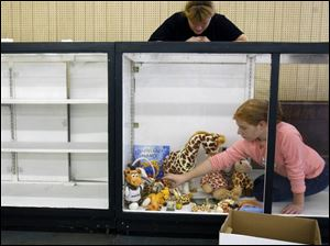 Morgan Mohr, 11, of Sylvania arranges her giraffe collection with help of her mom, Kathleen, for the Youth Collections display.