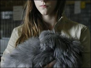 Erica Horak, 11, strokes her Black English Angora rabbit at the fairgrounds.