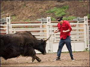 A bull charges at Johnny Knoxville in Jackass: Number Two.