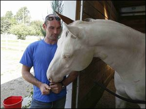 Craig Lundgren mission is to end horse slaughter and promote a more humane way to put down the creatures.