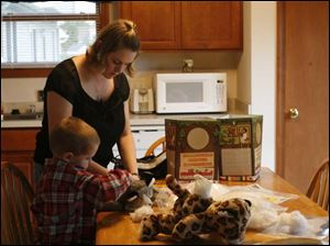 Sara Graff and her son David stuff an animal from her at-home firm, Sara's Critter Creators.