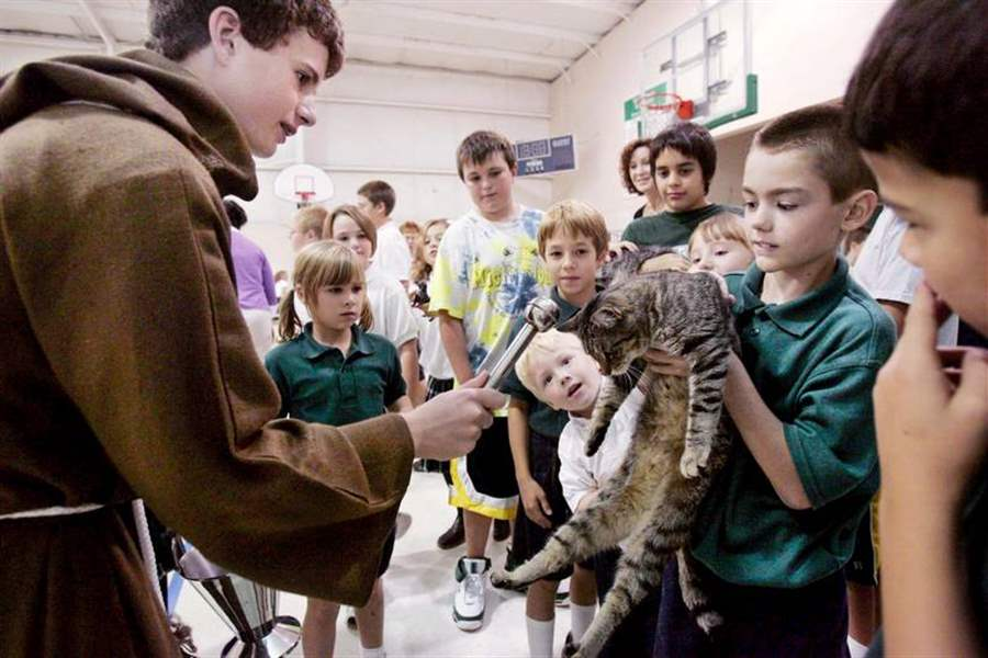 ALL-CREATURES-AT-ST-JEROME-SCHOOL