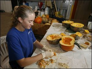 Kattie Miller, a sophomore at Northwest State Community College, removes seeds from test pumpkins at Rupp Seeds Inc.