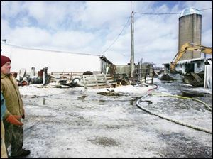 David Hermes surveys the damage after a barn fire yesterday near Sandusky. All 100 of the milking cows were removed and within hours were taken to a dairy farm near Vickery, Ohio, as neighbors pitched in.
