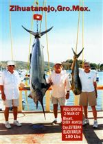 Fox-brothers-team-up-to-outfox-hungry-200-pound-white-marlin