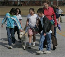 Canine-counselors-find-role-at-school-2