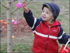 Ryan Whelan, 2, of Plymouth, Mich., finds an egg that's right for his reach during the egg hunt at Olander Park in Sylvania.