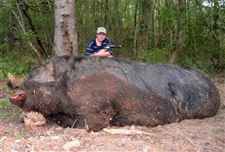 11-year-old-hunter-bags-1-050-lb-wild-boar-with-50-caliber-pistol