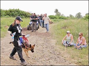 The cadaver dogs are an integral part of the search effort.