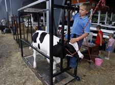 FUN-FOR-ALL-AT-THE-SENECA-COUNTY-FAIR-2
