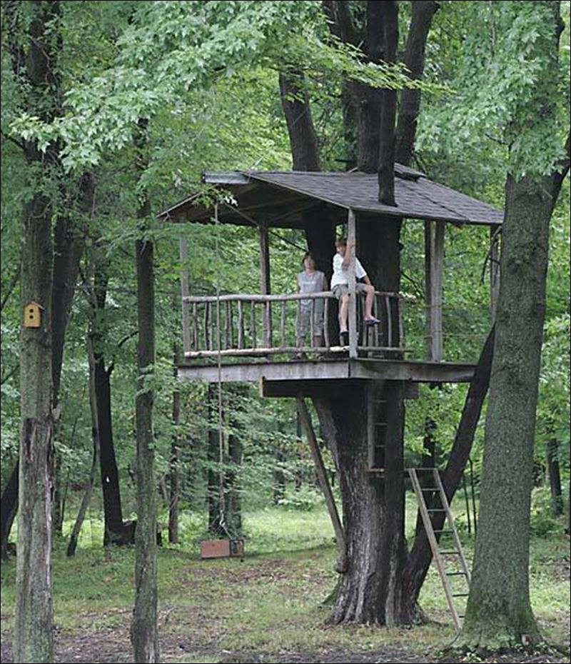 tree houses a kid s eye view of the world toledo blade