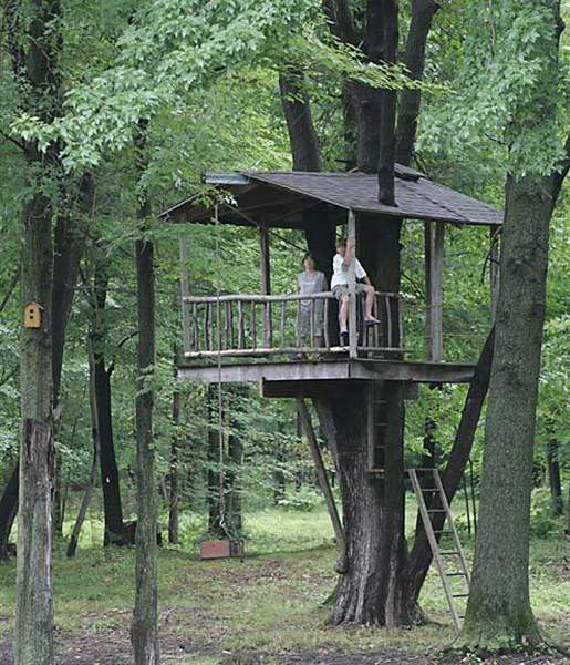 Tree houses a kid s eye view of the world the blade for Cool backyard tree houses