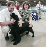 Toledo-Magazine-Local-couples-families-train-and-show-dogs-together-6