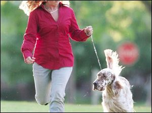 Lindsey Kuhn, a top dog handler at 19, runs with her English setter Logan.