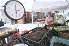 PLENTY-OF-FARM-FRESH-PRODUCTS-AT-THE-PERRYSBURG-FARMERS-MARKET-3