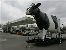 Holy-cow-Co-op-crafts-deal-to-buy-reopen-Sterling-Dairy