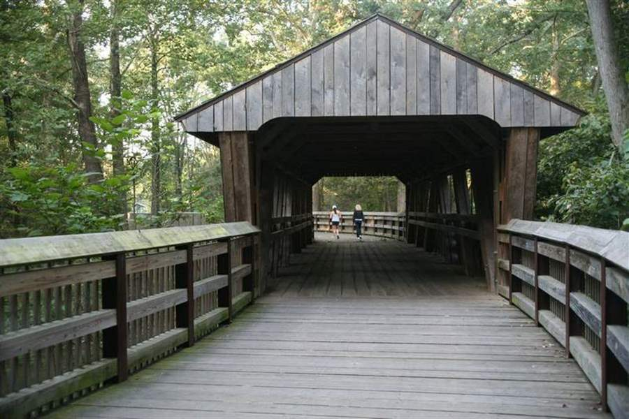 Wooden-spans-can-connect-us-with-the-natural-world-2