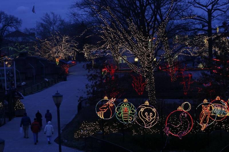 Toledo Zoo Hours Lights Before Christmas - Christmas Lights Card ...
