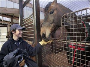 Lucia Coleman of Temperance communicates with Faithful at Fox Meadow Farms in Bedford Township. Judy Howard, owner of the stable, said horse owners seem to be recession-proof.