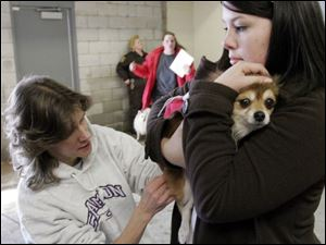 nbrn rabies21p     2/16/2008         The Blade/Herral Long    owners of pets getting their cats and dogs vacinated aganst rabies virus  at Monroe county animal control.  Andrea Penn of maybee mich  holds her palmerianion Tinky as Dr Dawn Hanusz with temperance animal hosp gives shot