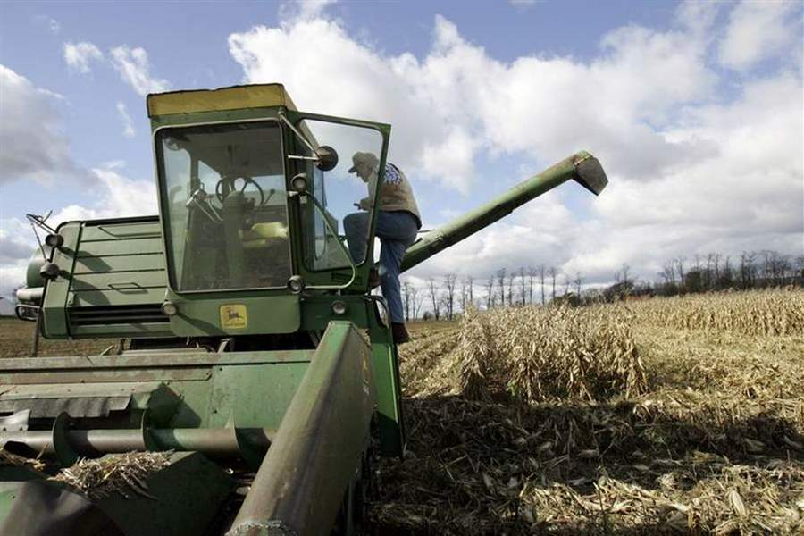 Corn-planting-expected-to-decrease