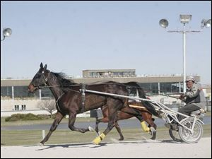 Roy Hunter exercises a horse at Raceway Park. Horse owners say the rise in other forms of gambling has hurt their industry.