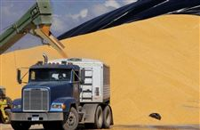 Ethanol-opponents-making-hay-with-increases-in-world-food-prices