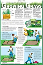 7-steps-to-growing-grass