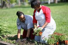 AMERICORPS-WORKERS-CLEAN-UP-TOLEDO-NEIGHBORHOOD