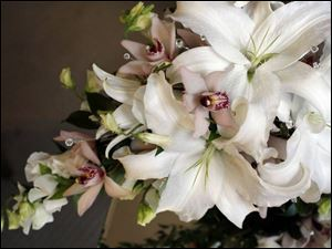 A streamlined cascade pf white lilies, cymbidium orchids, white sweet pea, and crystal gems.
