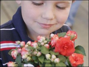 Henry Clark, 5, looks at a plant from one of dozens of vendors at Flower Day Weekend. Amy Riese of Toledo has her hands full after checking out the vendors at the event near the Erie Street Market.
