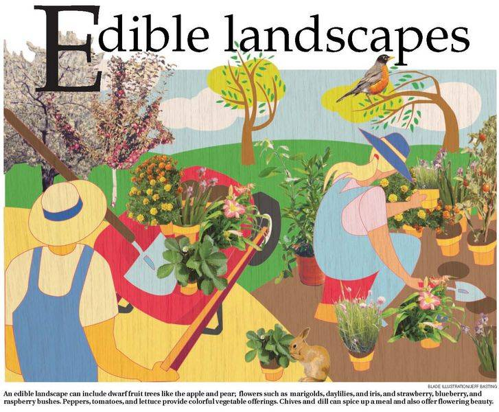 Edible Landscapes Put Your Yard To Work As A Source Of