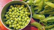 Sweet-Peas-fresh-shelled-vegetable-gives-amazing-flavor
