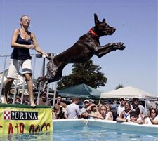 Air-dogs-make-a-splash-at-Maumee-Andersons